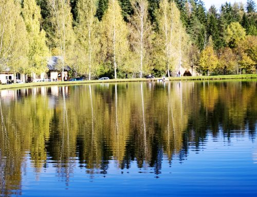 Are aquatic herbicides safe for your lake?